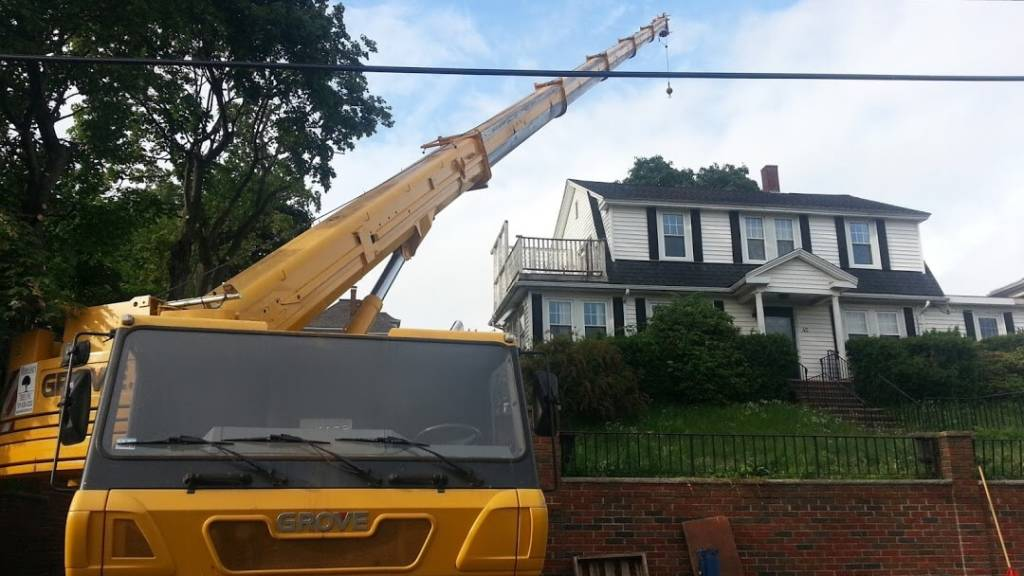 Delicate tree removal in Winchester, MA--Middlesex Tree Service