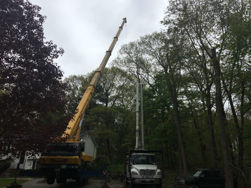 Crane and 60 ft. bucket truck at work removing large tree in close quarters--Middlesex Tree Service
