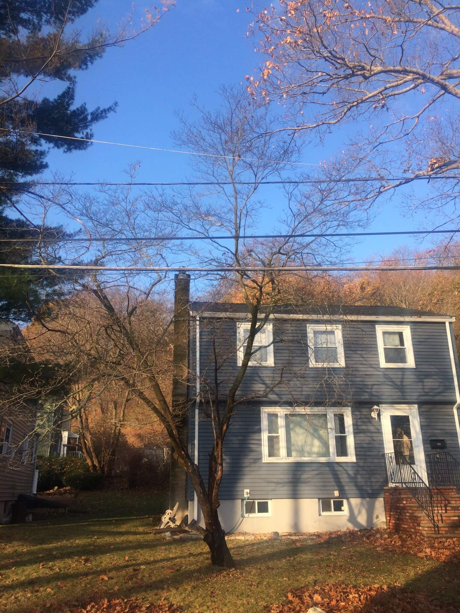 House and wire clearance tree trimming in Malden, MA